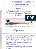 ERP Chapter1