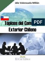 Tópicos del comercio exterior chileno-1