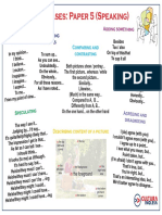 CAE Speaking useful.pdf