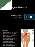 Estrogen Reseptor