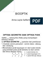 Bio Optik