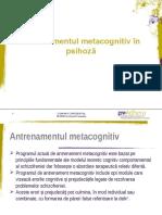 Antrenamentul metacognitiv