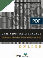 Espiritismo e Escravidão Textos Da Sociedade Academica