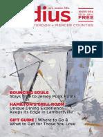 Radius Issue #34