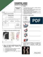 Taller-Sistema-Oseo.pdf