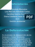 La Deforestación.pptx