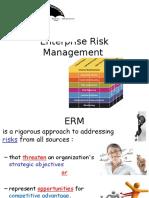 D1 Enterprise Risk Management