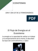 Ecosistemas Leyes de La Termodinámica