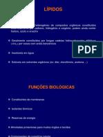 4- Lipidos