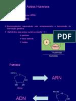 5- Acidos nucleicos