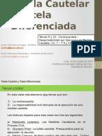 Tutela Cautelar y Tutela Diferenciada Ppt Clase 7 Temas 9 y 10 VF (0309216xD5325)