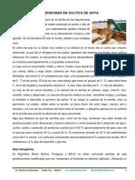 Proyecto Soja Esp
