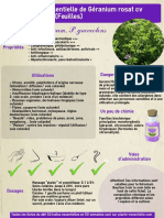 ficheHE3geranium.pdf