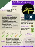 ficheHE12ylang.pdf