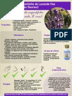 ficheHE6lavande.pdf