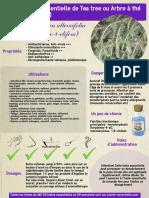 ficheHE9teatree.pdf