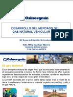 Desarrollo Del Mercado de GNV Hugo Talavera