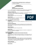 Formato Nº 10 Especificaciones Tecnicas Adicional