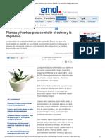Plantas y Hierbas Anti Estrés y La Depresión _ T&M en Emol