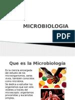 pRESENTACION MICROBIOLOGIA
