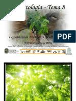 Tema 8 Agrostologia - Leguminosas Forrajeras Multipropósito