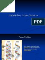 2a_Acidos+Nucleicos