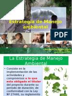 Estrategia de Manejo Ambiental
