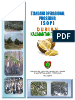 Sop Budidaya Durian Kalteng