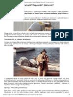 Zaptivanje spojeva_ Zalepiti_ Zapečatiti_ Iskitovati_ - Gradjevinarstvo.pdf