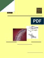 Nitinol Un Biomaterial
