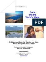 Dams & the World's Water.pdf