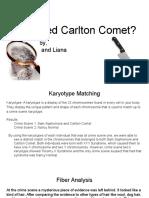 who killed carelton comit-