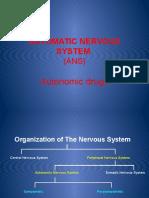 6 -Sinaptotropic drugs.pptx