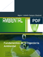 Fundamentos de la Ingeniería Ambiental