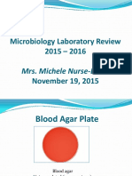 Review_Lab-2015-2016