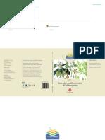 Il Nespolo del Giappone, origine e aspetti botanici.pdf