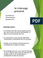 255150189-Tipos-de-liderazgo-empresarial.pdf