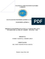 Tesis de Presencia de Biopeliculas en La Calidad Del Agua Potable Del Aa.hh. El Carmen Huaura 2016