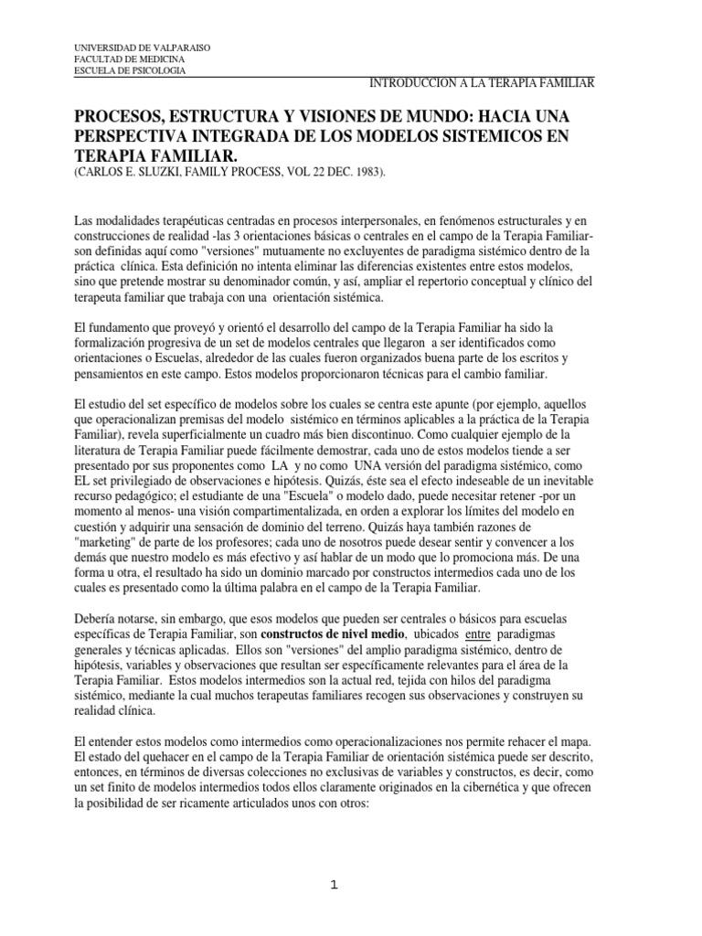 Procesos Estructura Y Visiones C Sluzki