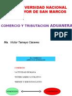 Victor Tamayo.pptx