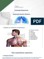 Fisiologia Humana Editado