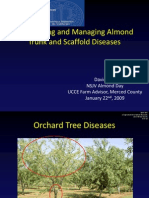 Recognizing and Managing Common Almond Trunk and Scaffold