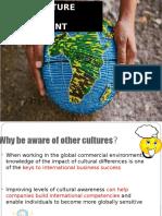 cross Cultural diversity.pptx