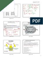 pdf protein synthesis