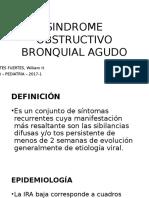 Sindrome Obstructivo Bronquial Agudo