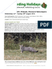 Wildcats and Wolves August 2016