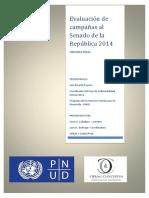 Informe PNUD evaluación de campañas