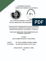 Identificación y Distribución de Malezas, En Praderas Cultivas de La Microcuenca Ganadera Ventilla Del Distrito de Molinopampa- Chachapoyas- Amazonas