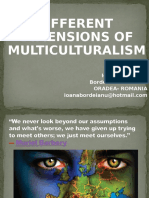 Different Dimensions of Multiculturalism Final
