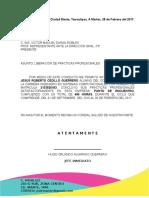 Carta Liberacion Practicas